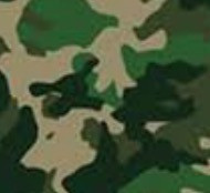 CAMOUFLAGE CE